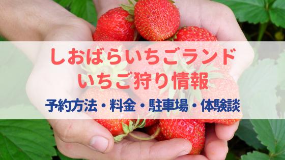 しおばらいちごランド(栃木)は予約が必要⁈料金・アクセス・駐車場まとめ!