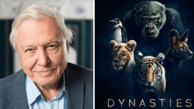Mutatjuk David Attenborough legújabb sorozatát