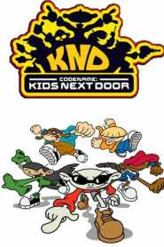 Codename: Kids Next Door Season 3