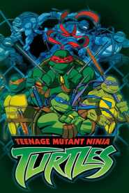 Teenage Mutant Ninja Turtles 2003 Season 6