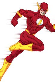 The Flash Cartoon Series