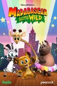 Madagascar: A Little Wild Season 4