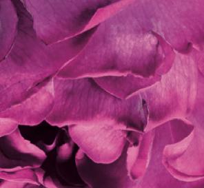 Captura de pantalla 2014-04-15 a la(s) 00.01.19