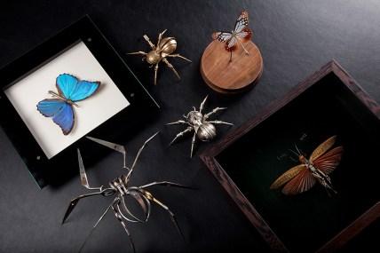 mechanical-entomology_intro