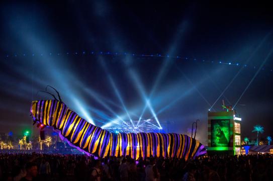 Coachella Festival USA (7)