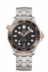 OMEGA Seamaster Diver 300M-1