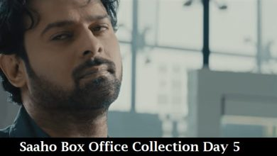 Photo of Saaho Box Office Collection Day 5