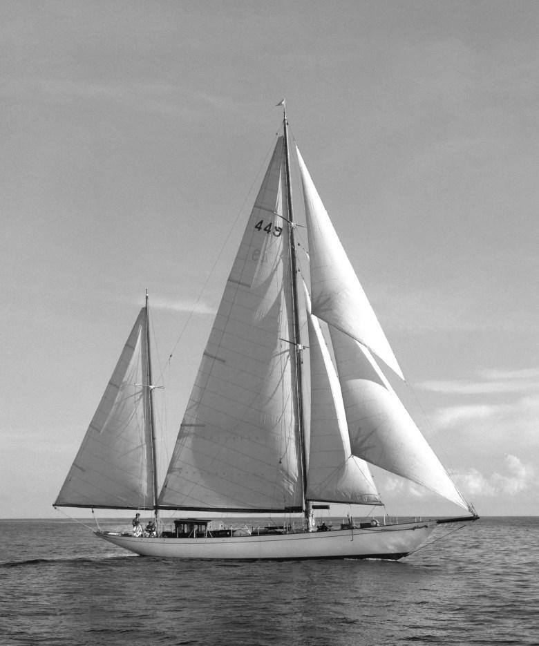 Panerai Radiomir Eilean Yacht 2 854x1024