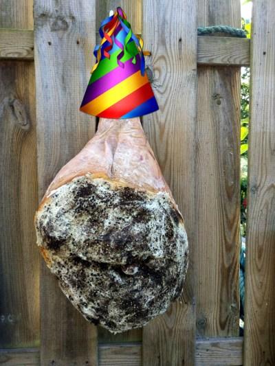 Ham- & verjaarfeest