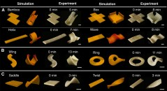 Science sunday: Mighty Morphing Power Rangers pasta