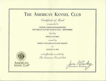 Luke Certificate of Merit has arrived.