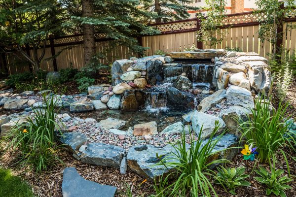 pond water feature