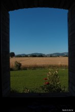 Umbria Farmhouse, looking out the window