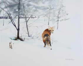 Brenda Beck Fisher, Winter Visitor