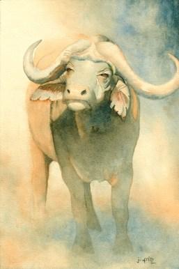 """Fritz, """"Wary Buffalo"""""""