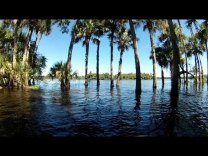 JetSkiing a Flooded St Johns River