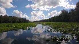 Wekiva River JetSki Ride