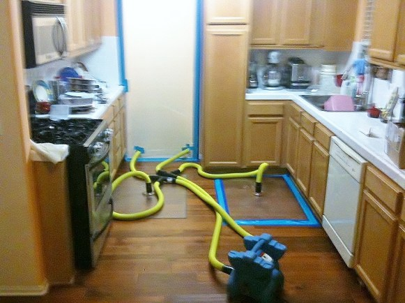 Water Damaged Flooring