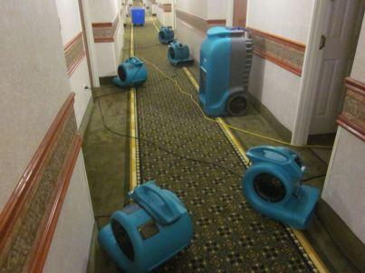 water damage company los angeles