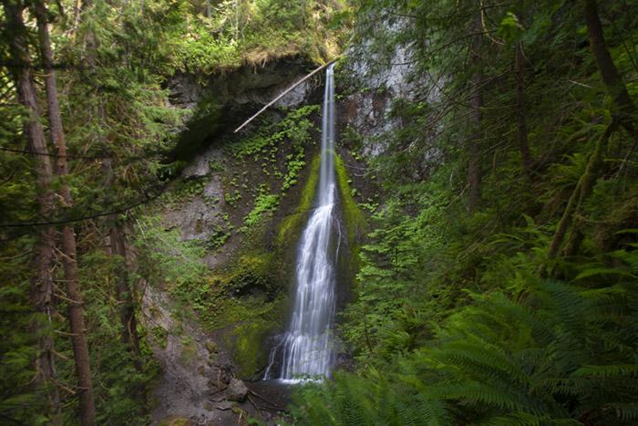 Marymere Falls. Copyright Roddy Scheer www.roddyscheer.com