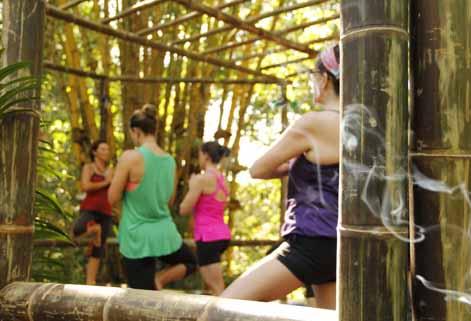 Detox Yoga Retreat and Raw Vegan at Waterfall Villas
