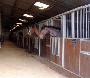 stables-300x259