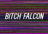 bitch falcon