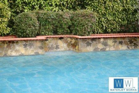 Leaves on Pool Edge