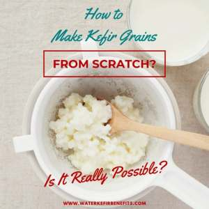 How to Make Kefir Grains from Scratch.