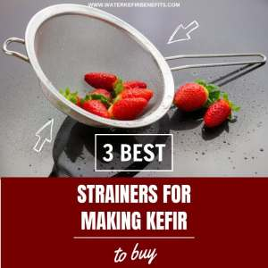 3 Best Strainers for Making Kefir to Buy