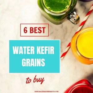 6 Best Water Kefir Grains to Buy.