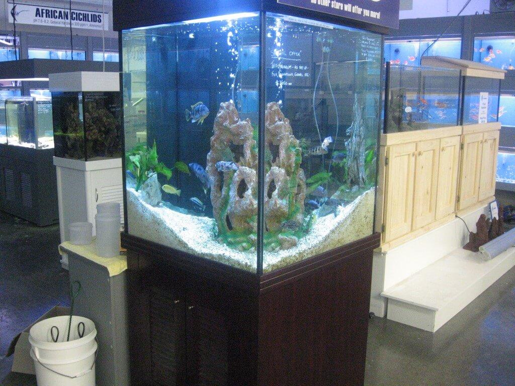 Aquariums Melbourne