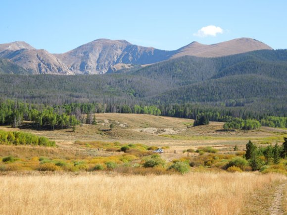 Rocky Mountains with field, forest and mountains.