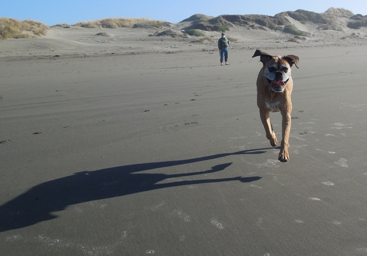Lucie Bea running at the beach, photo by Waterlink Web