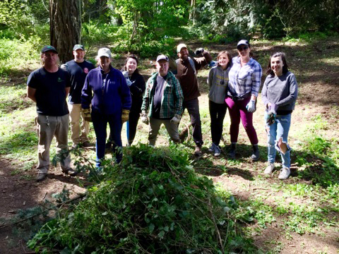 Blackberry removal crew organized by Waterlink Web, Mary Ann Aschenbrenner.