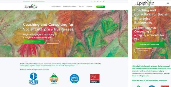 Mighty Epiphyte's website in full and mobile versions