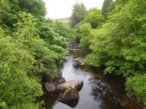 Downstream through the rocks