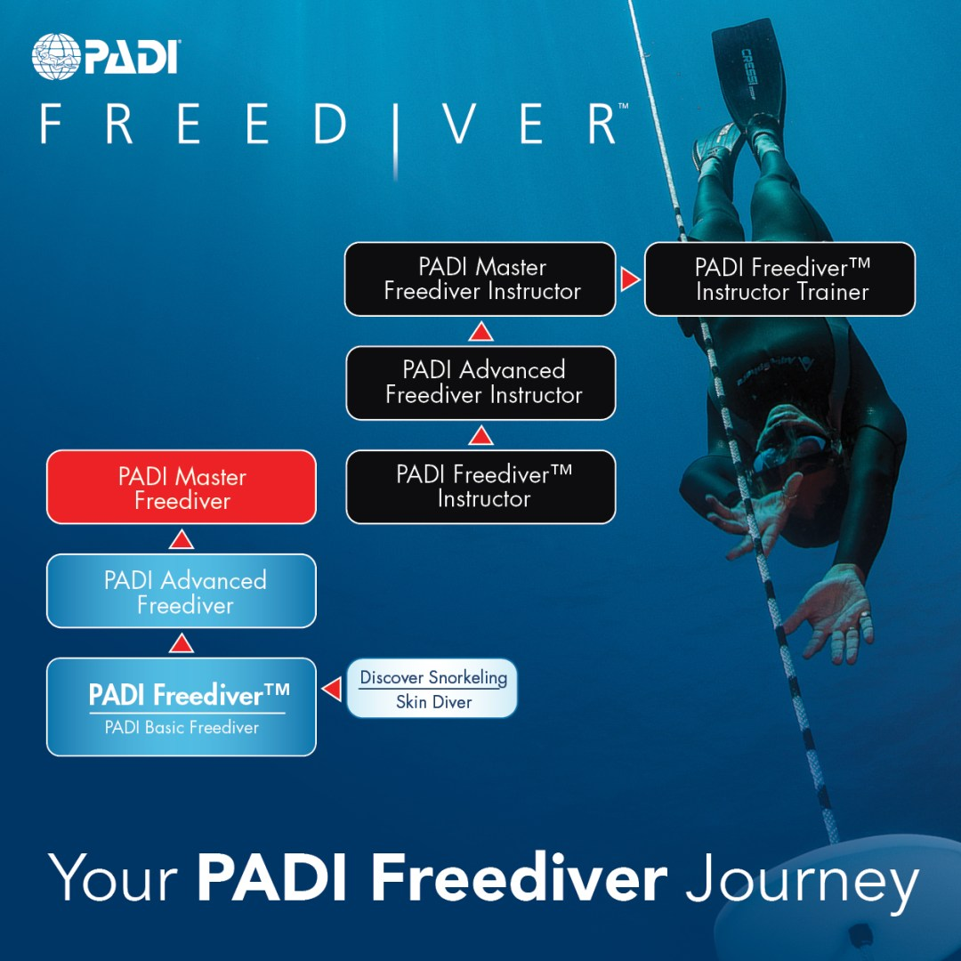PADI Freediver Journey