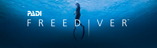 PADI Freediver Basic Course August