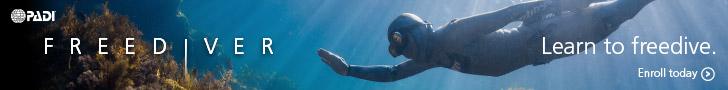 Learn to Freedive with PADI Freediver