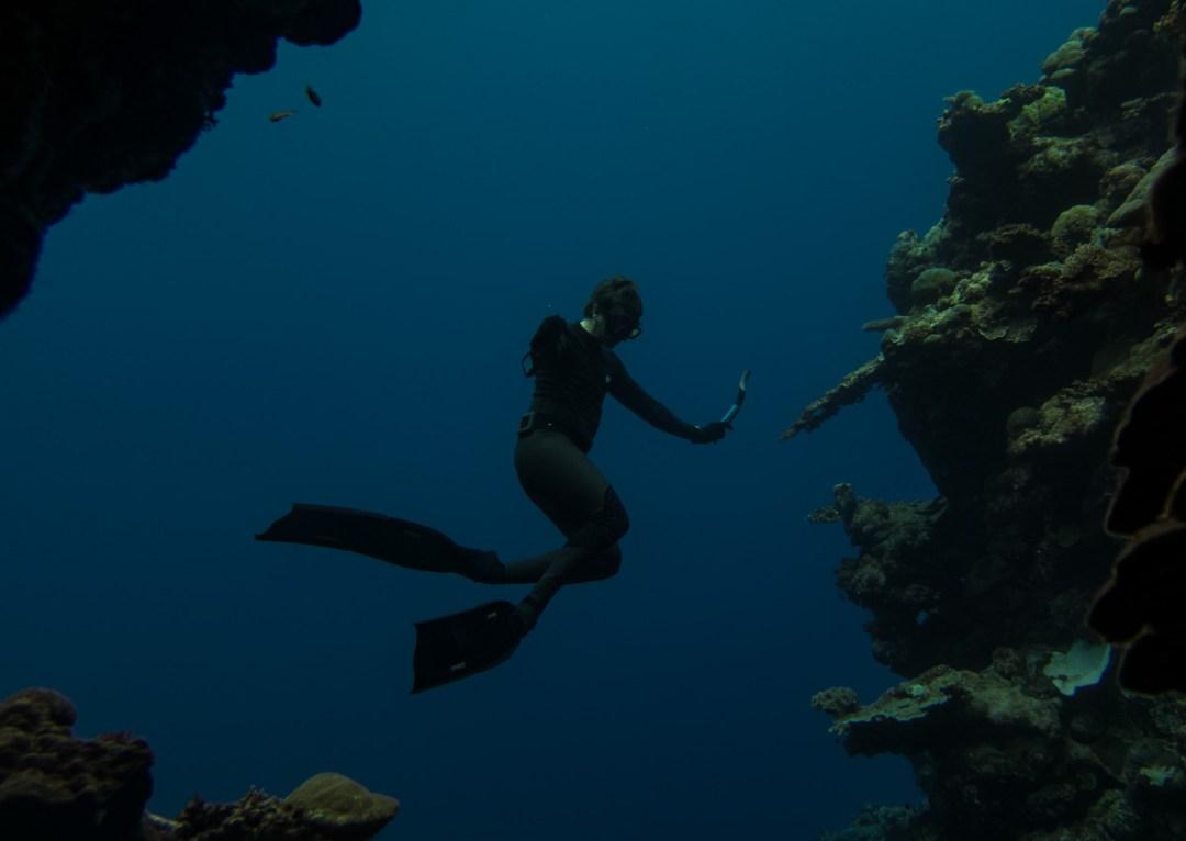 Freediving Holiday Solomon Islands