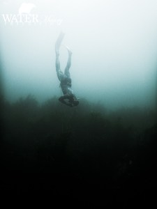 Freediving course Port Arthur Tasmania