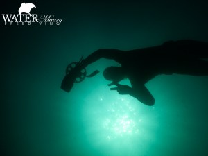 Freediving Melbourne