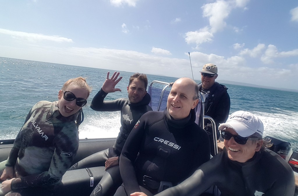 Freediving Excursions aboard Kavorca