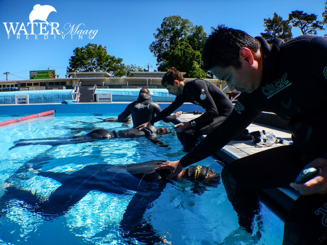 Freediving training dive Melbourne