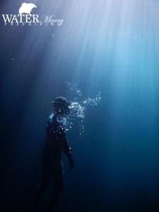 Freediver ascends Tasman Peninsula