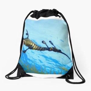 Beach drawstring bag weedy seadragon print