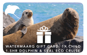 WaterMaarq Gift Voucher Sorrento Dolphin and Seal Watching Cruise