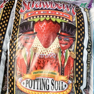 FoxFarm Strawberry Fields Ptg Soil 1.5cf  (75/PL)