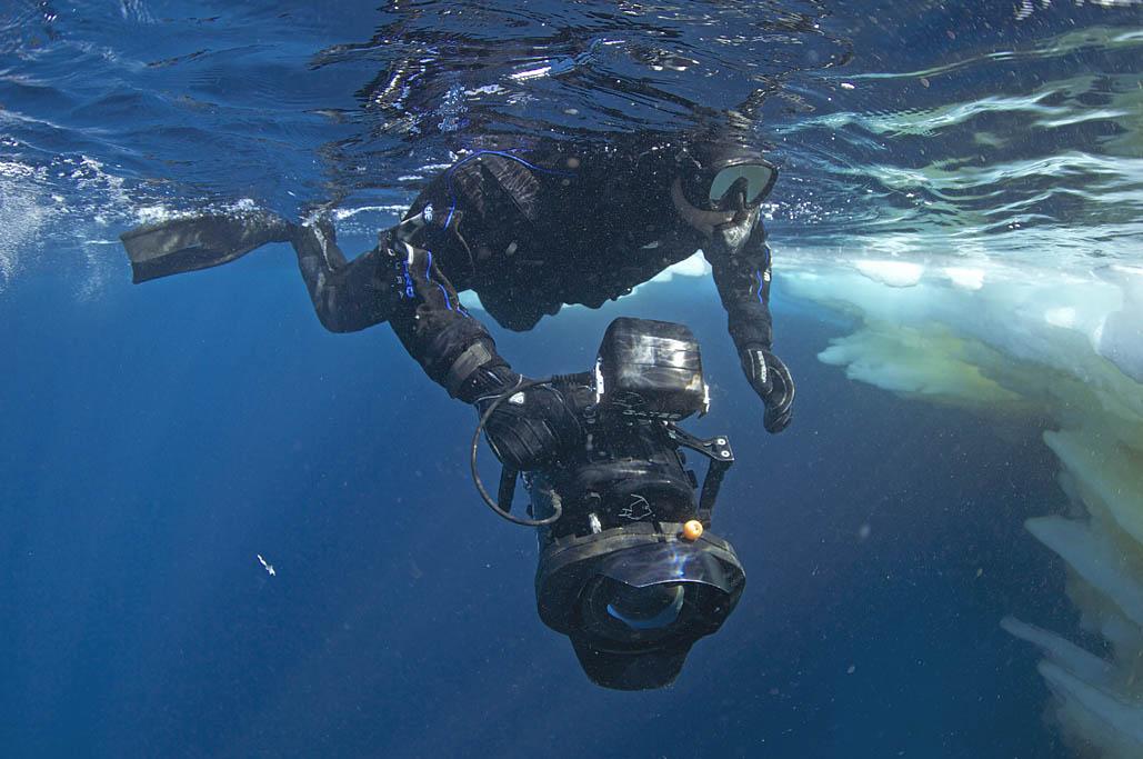 Göran Ehlmé underwater photographer